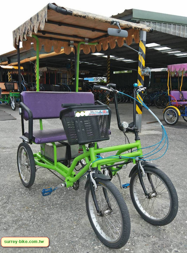 Electric Buddy Bike for 2 people