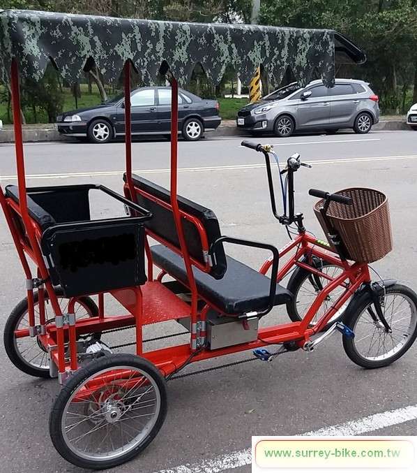 Electric Motor Surrey Bike for 2 adults and 2 kids