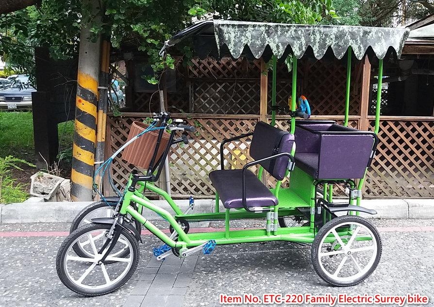 Electric Family Bicycle