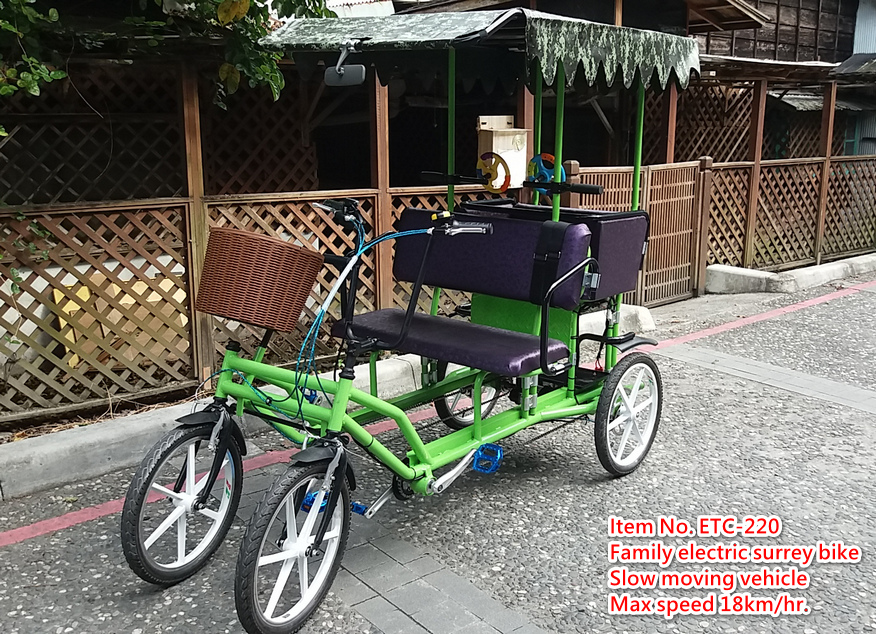 Family Bike with Electric Motor
